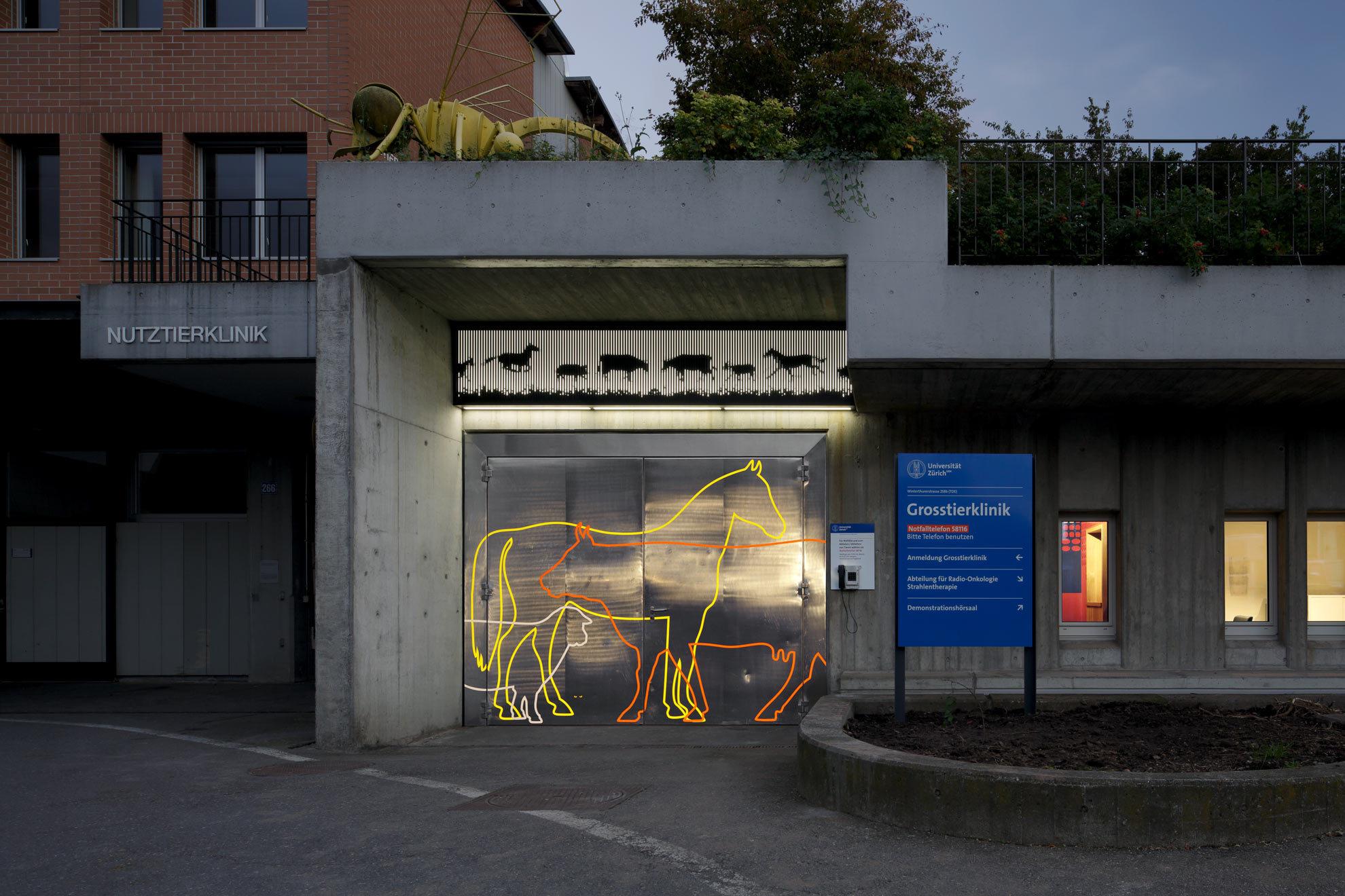 Vetsuisse faculty of the university of zurich ch zurich bureau